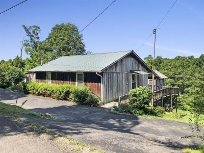 Houston County Single Family Home For Sale: 295 Lakeview Ln