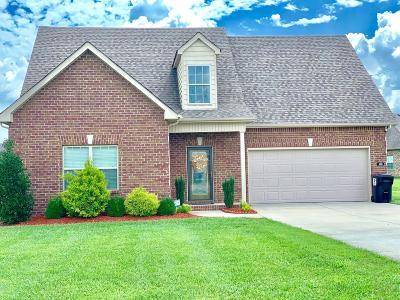 Smyrna Single Family Home For Sale: 310 Janie St