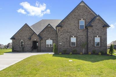 Clarksville Single Family Home For Sale: 49 Hartley Hills