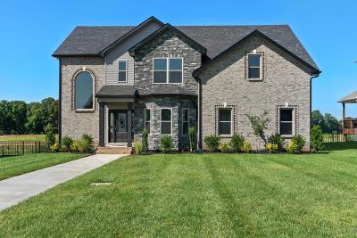 Adams, Clarksville, Springfield, Dover Single Family Home For Sale: 113 John Duke Tyler Blvd