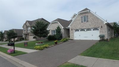 Stonebridge, Stonebridge Ph 1, 2, 3, Stonebridge Ph 11, Stonebridge Ph 17 Single Family Home For Sale: 341 Meandering Dr