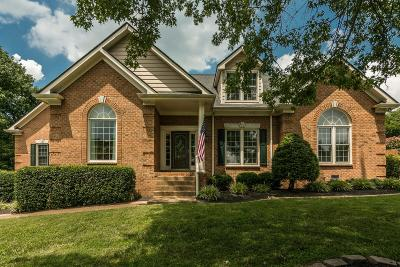 Hendersonville Single Family Home For Sale: 108 Meadowpointe W