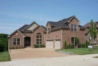 Gallatin Single Family Home For Sale: 1028 Appaloosa Way Lot 4