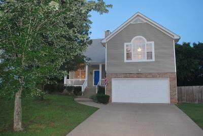 Hendersonville Single Family Home Active Under Contract: 155 Waters Edge Ln