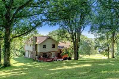 Mount Pleasant Single Family Home For Sale: 3369 Hampshire Pike