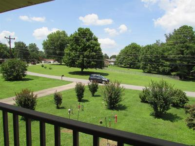 Old Hickory Single Family Home For Sale: 205 Green Harbor