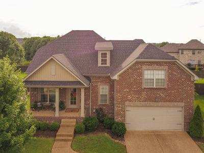 Hendersonville Single Family Home For Sale: 137 McKain Crossing