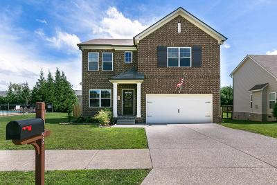 Spring Hill  Single Family Home For Sale: 1083 Achiever Cir