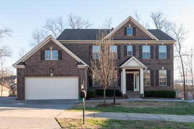 Hendersonville Single Family Home For Sale: 159 Ervin St
