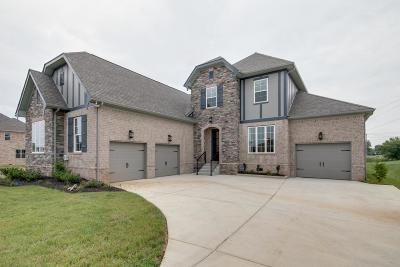 Smyrna Single Family Home For Sale: 7121 Springwater St