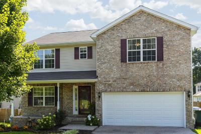 White House Single Family Home For Sale: 120 Willowleaf Lane