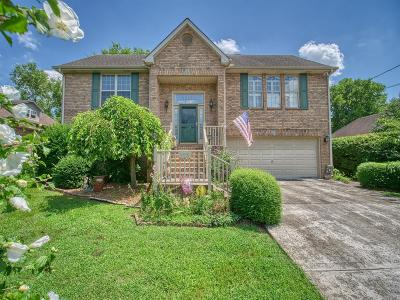 Smyrna Single Family Home For Sale: 115 Cedar Forest Dr