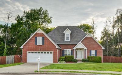 Clarksville Single Family Home Active Under Contract: 3943 Stella Dr