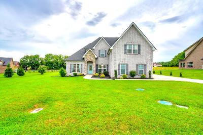Lascassas Single Family Home For Sale: 134 Saturday Dr