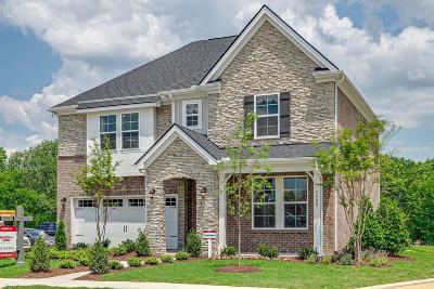 Mount Juliet Single Family Home For Sale: 519 Montrose Drive (401)
