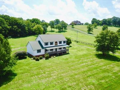 Sumner County Single Family Home For Sale: 250 Kirk Ln