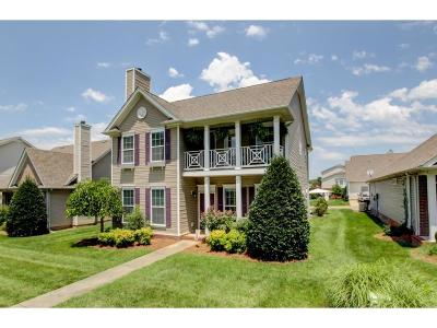Clarksville Single Family Home For Sale: 182 Whitman Aly