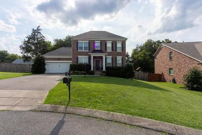 Mount Juliet Single Family Home For Sale: 156 Normandy Drive