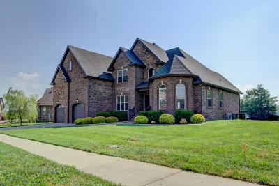 Clarksville Single Family Home For Sale: 1161 Buggy Cv