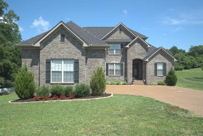 Hendersonville Single Family Home For Sale: 1027 Del Ray Trl