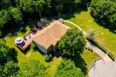 Nashville Single Family Home For Sale: 233 Walking Horse Hill