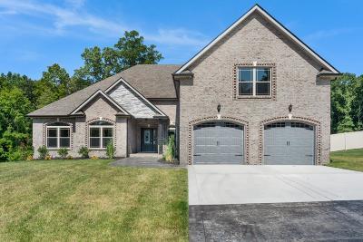 Clarksville Single Family Home For Sale: 37 Reda Estates