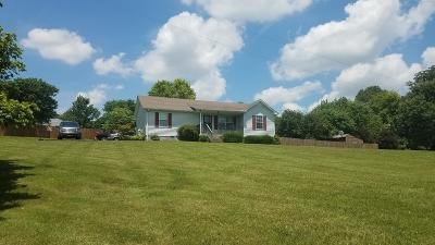 Robertson County Single Family Home For Sale: 5200 Jones Chapel Rd