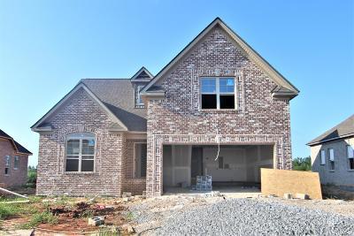 Clarksville Single Family Home For Sale: 33 Ella Lane #33-C