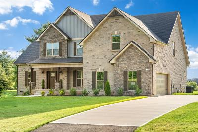 Clarksville Single Family Home For Sale: 3172 Dunlop Lane