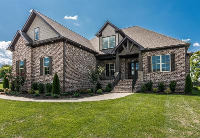 Sumner County Single Family Home For Sale: 1035 Albatross Way