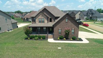 Christian County, Ky, Todd County, Ky, Montgomery County Single Family Home For Sale: 1029 Black Gum Ln