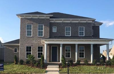Nolensville Single Family Home For Sale: 700 Vickery Park Drive L-156