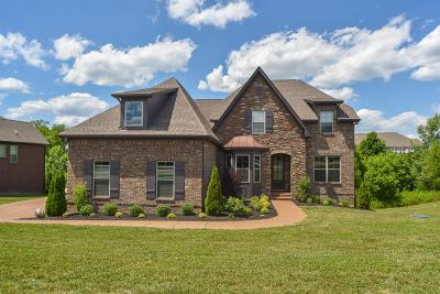 Mount Juliet Single Family Home For Sale: 608 Stirrup Ct