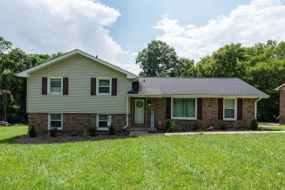 Hendersonville Single Family Home Active Under Contract: 100 Nan Dr