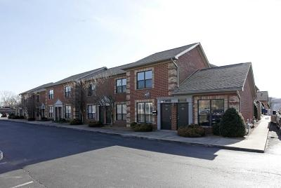 Franklin Commercial For Sale: 504 Autumn Springs Ct # D30