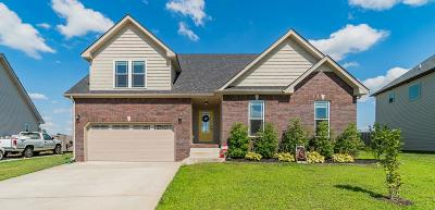 Clarksville Single Family Home For Sale: 1753 Spring Haven Dr