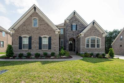 Nolensville Single Family Home For Sale: 2017 Belsford Drive