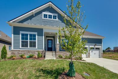 Spring Hill  Single Family Home For Sale: 241 Star Pointer Way Lot 27