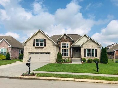 Spring Hill Single Family Home For Sale: 1071 Aenon Cir