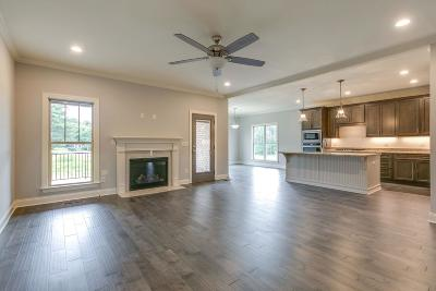 Spring Hill Single Family Home For Sale: 204 Star Pointer Way-Lot 41