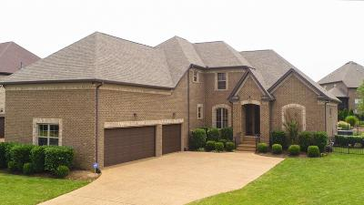 Sumner County Single Family Home For Sale: 341 Crooked Creek Ln