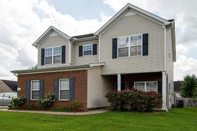 Smyrna Single Family Home For Sale: 801 Avatar Ct