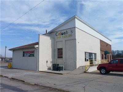 Adams, Clarksville, Springfield, Dover Commercial For Sale: 703 Providence
