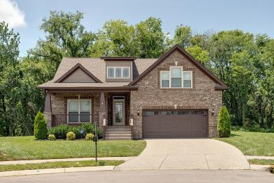 Spring Hill Single Family Home For Sale: 3021 Foust Dr