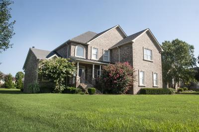 Hendersonville Single Family Home For Sale: 1025 Dorset Dr