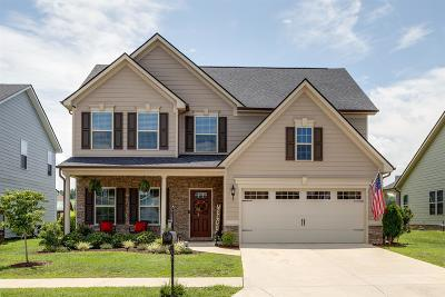 Spring Hill Single Family Home For Sale: 103 Shanache Dr
