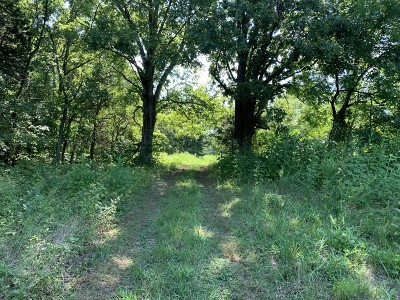 Christian County, Ky, Todd County, Ky, Montgomery County Residential Lots & Land For Sale: 4001 Guthrie Dr