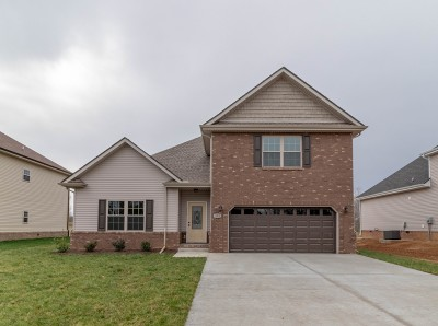 Clarksville Single Family Home For Sale: 332 Chase Dr