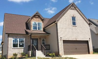 Clarksville Single Family Home For Sale: 157 Locust Run
