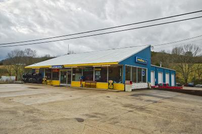 Woodbury TN Commercial For Sale: $309,900